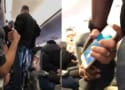 United Airlines CEO to Staff: Way to Beat That Guy Up!
