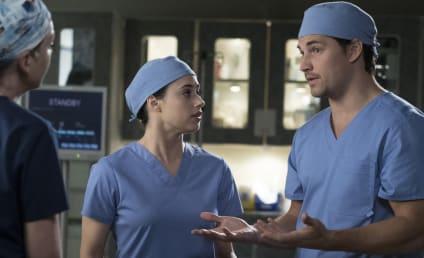 Grey's Anatomy Season 14 Episode 19 Recap: Beautiful Dreamer