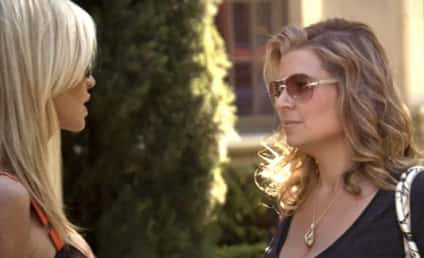The Real Housewives of Beverly Hills Recap: Welcome, Dana Wilkey!