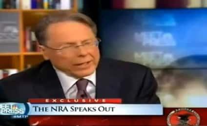 NRA President on Meet the Press: Call Me Crazy...