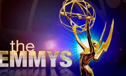2014 Emmy Nominations: Who's Going for the Gold?