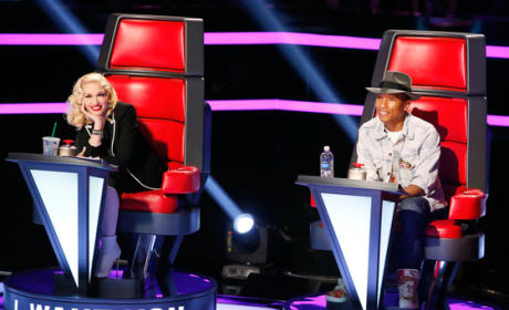 Grade Gwen Stefani and Pharrell on The Voice Season 7.