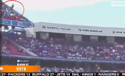 Buffalo Bills Fan Falls From Upper Deck Into Crowd Below During Game