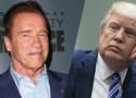 Arnold Schwarzenegger Destroys Donald Trump: You Got Swamped!