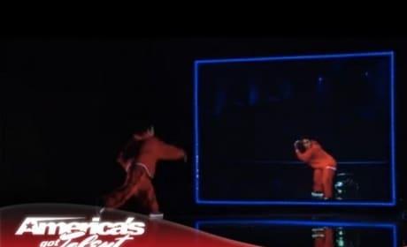 Kenichi Ebina Wows on America's Got Talent