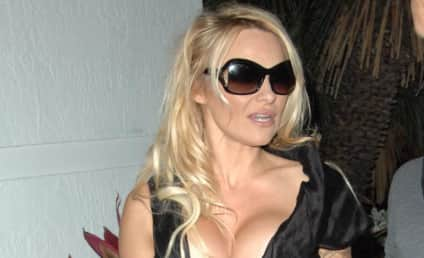 Pamela Anderson Remains Clothed; Talks About Kid Rock, Baywatch