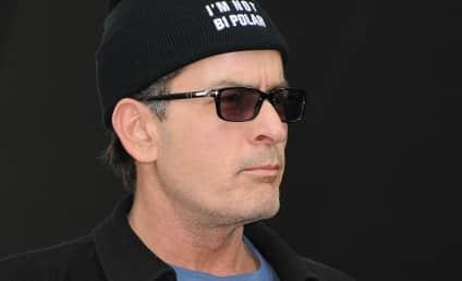 Charlie Sheen Bid For Custody: Rejected!
