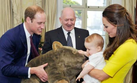 Prince William Shows Prince George A Stuffed Wombat