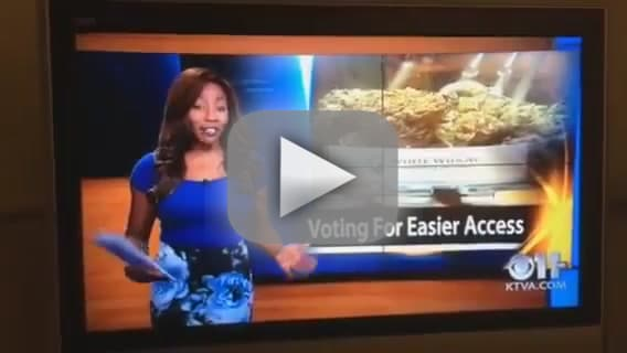 TV Reporter Quits to Run 'Cannabis Club'