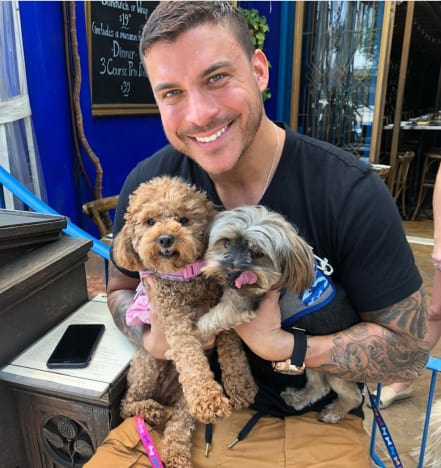 Jax Taylor and Dogs