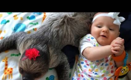 Baby and Sloth Form Unexpected, Ridiculously Adorable Friendship