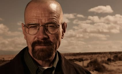 Bryan Cranston: Breaking Bad Movie Could Happen!