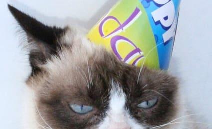 Happy Birthday, Grumpy Cat!!!