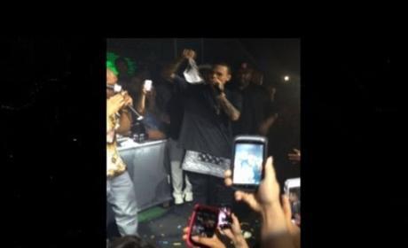 Chris Brown Panties