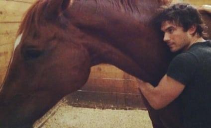Ian Somerhalder and Nikki Reed: Adopting a HORSE!
