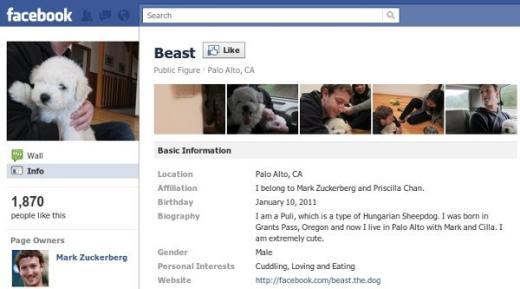 Beast on Facebook
