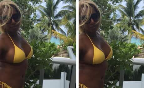 NeNe Leakes Bikini Body