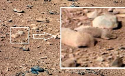 Mars Rat Spotted in Rover Photos?