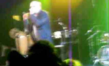 Pitbull Goes All Chris Brown on Fan, Keeps Performing