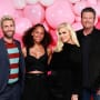 The Voice Season 12 Cast Picture