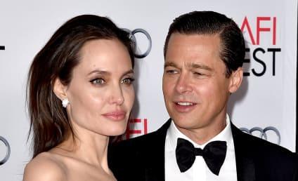 Angelina Jolie Files for Divorce from Brad Pitt!