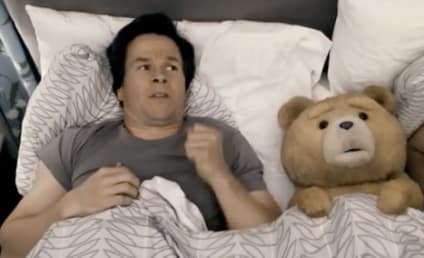 Box Office Report: Talking Teddy vs. Stripping Studs