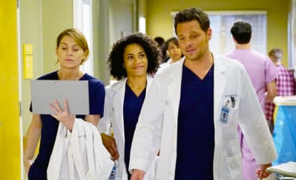 Grey's Anatomy Season 13 Premiere Recap: I Wanna Undo It