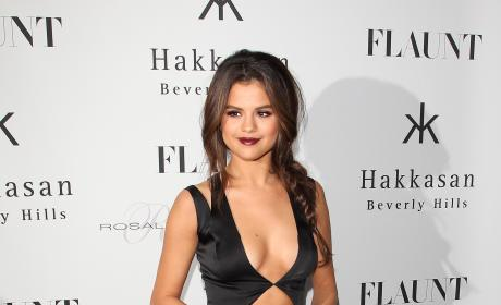 What do you think of this dress on Selena Gomez?