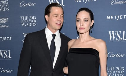 Brad Pitt: Angelina Jolie is Too Busy to Be a Mom!