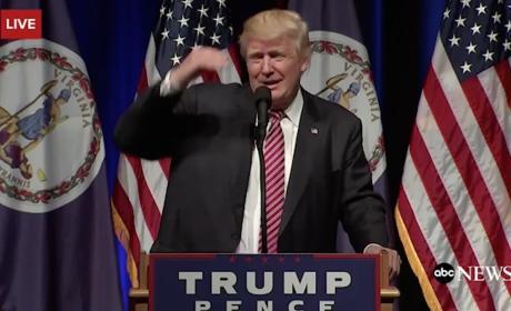 Donald Trump Looks Into Crowd
