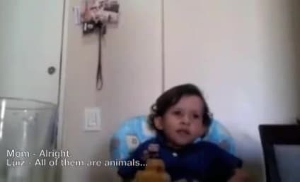 Adorable Child Questions Killing of Animals, Brings Mother to Tears