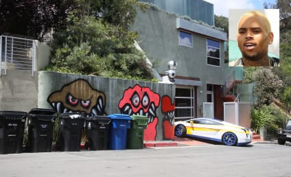 Chris Brown: Graffiti Stays Up!