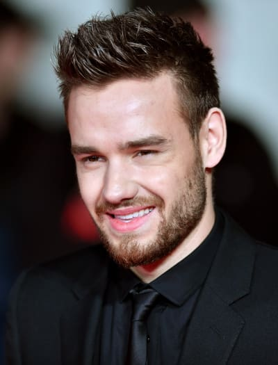 Liam Payne Goes Naked on Instagram: See The Picture!