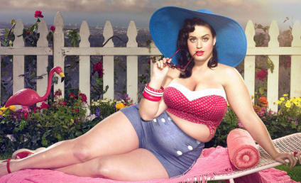 "Artist Satisfies ""Chubby"" Fetish, Makes Celebrities REALLY Fat: See the Photos!"