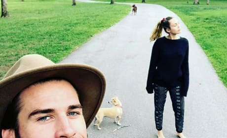 Liam Hemsworth and Miley Cyrus Walking Dogs