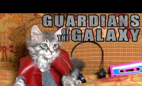 Cats Star in Revamped Guardians of the Galaxy