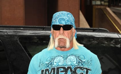 Hulk Hogan to File Lawsuit Against Bubba the Love Sponge