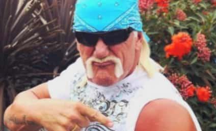 Hulk Hogan Fires Back at Ex, Denies Allegations of Violence