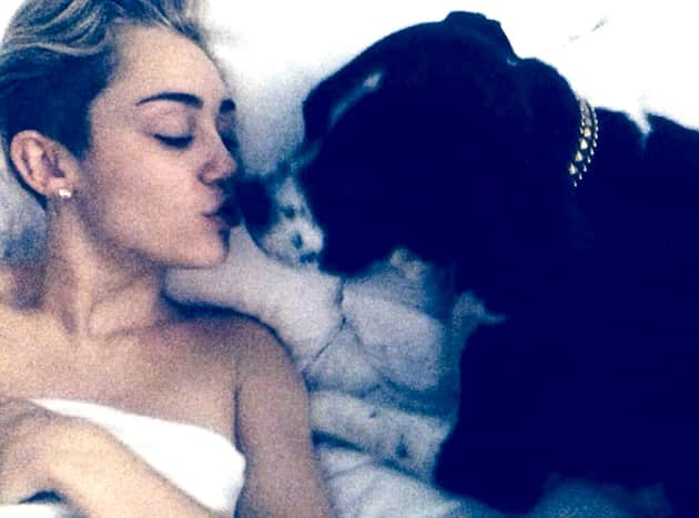Miley Cyrus in Bed with a Dog
