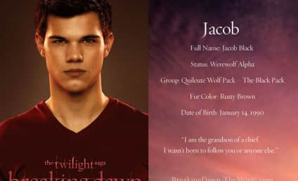 Twice the Breaking Dawn? Reports Confirm Fifth Twilight Saga Film