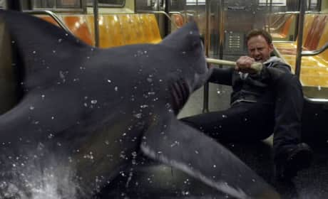 Sharknado 2 Scene