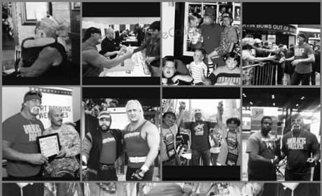 Hulk Hogan Collage