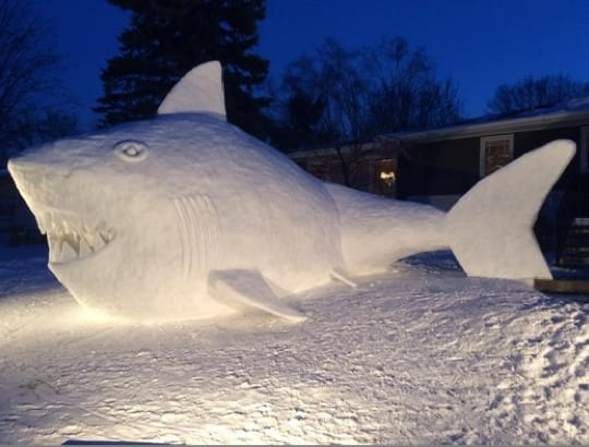 Minnesota Snow Shark