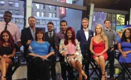 Dancing With the Stars Season 17: Who Do You Want to Win?