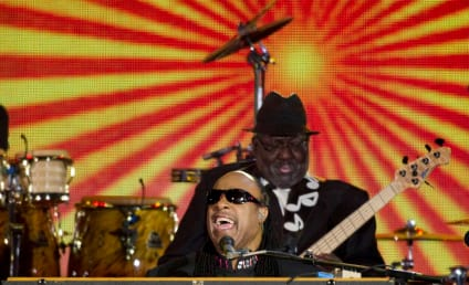 Stevie Wonder Apologizes for Controversial Statement on Gays