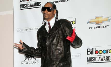 Snoop Dogg on the Red Carpet