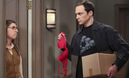 The Big Bang Theory Sex Shocker: Who's Gonna Do It?!?