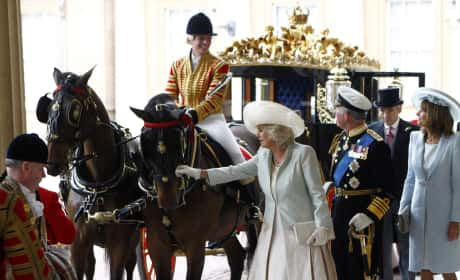 The Duchess of Cornwall Pets a Horse at Buckingham Palace
