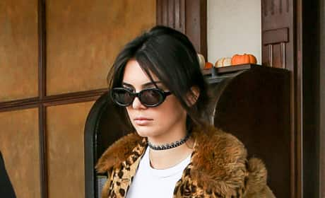 Kendall Jenner Sighted Wearing Leopard Print
