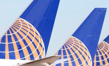Giant Playboy Bunny Found Dead on United Flight